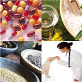 VETERINARY PHARMACEUTICAL