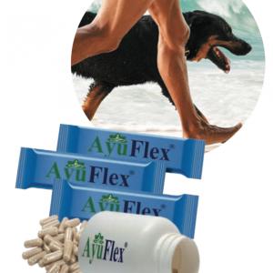 AyuFlex