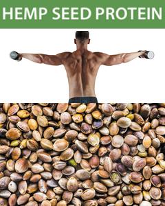 Borela Hemp Seed Protein