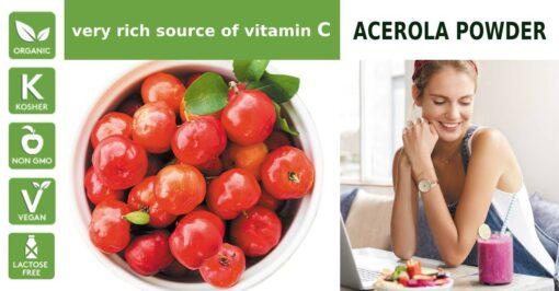 Acerola Fruit Powder Extract 1
