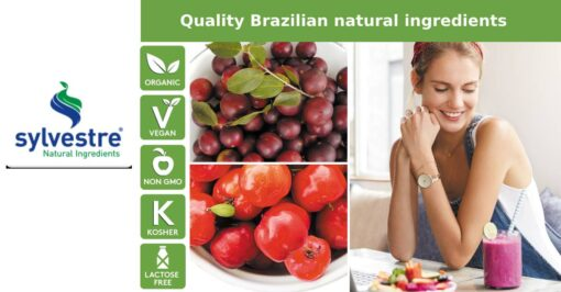 sylvestre quality Brazilian natural ingredients