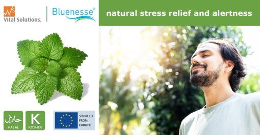 Bluenese -for natiral stress relief and alertness