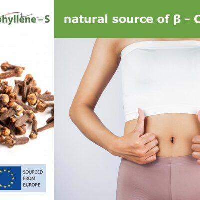 Endophyllene® - S - a nutral cource of Caryophyllene