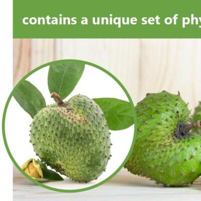 Soursop fruit (Graviola)
